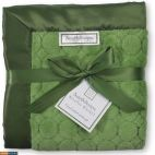 Детский плед SwaddleDesigns Stroller Blanket Pure Green Puff C